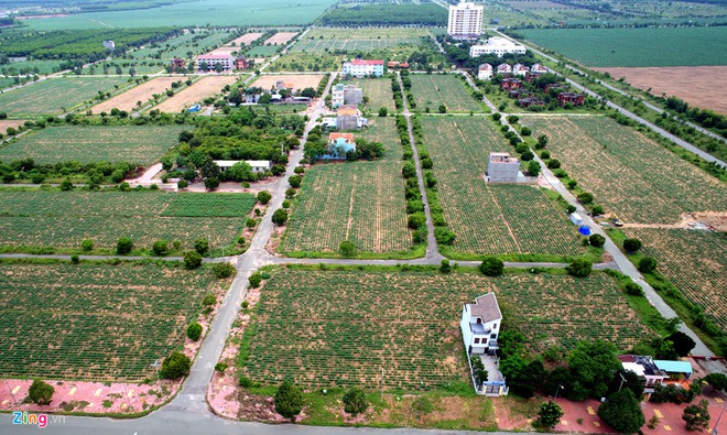 Dự án đất nền nhà phố Nhơn Trạch cập nhật 01-2020